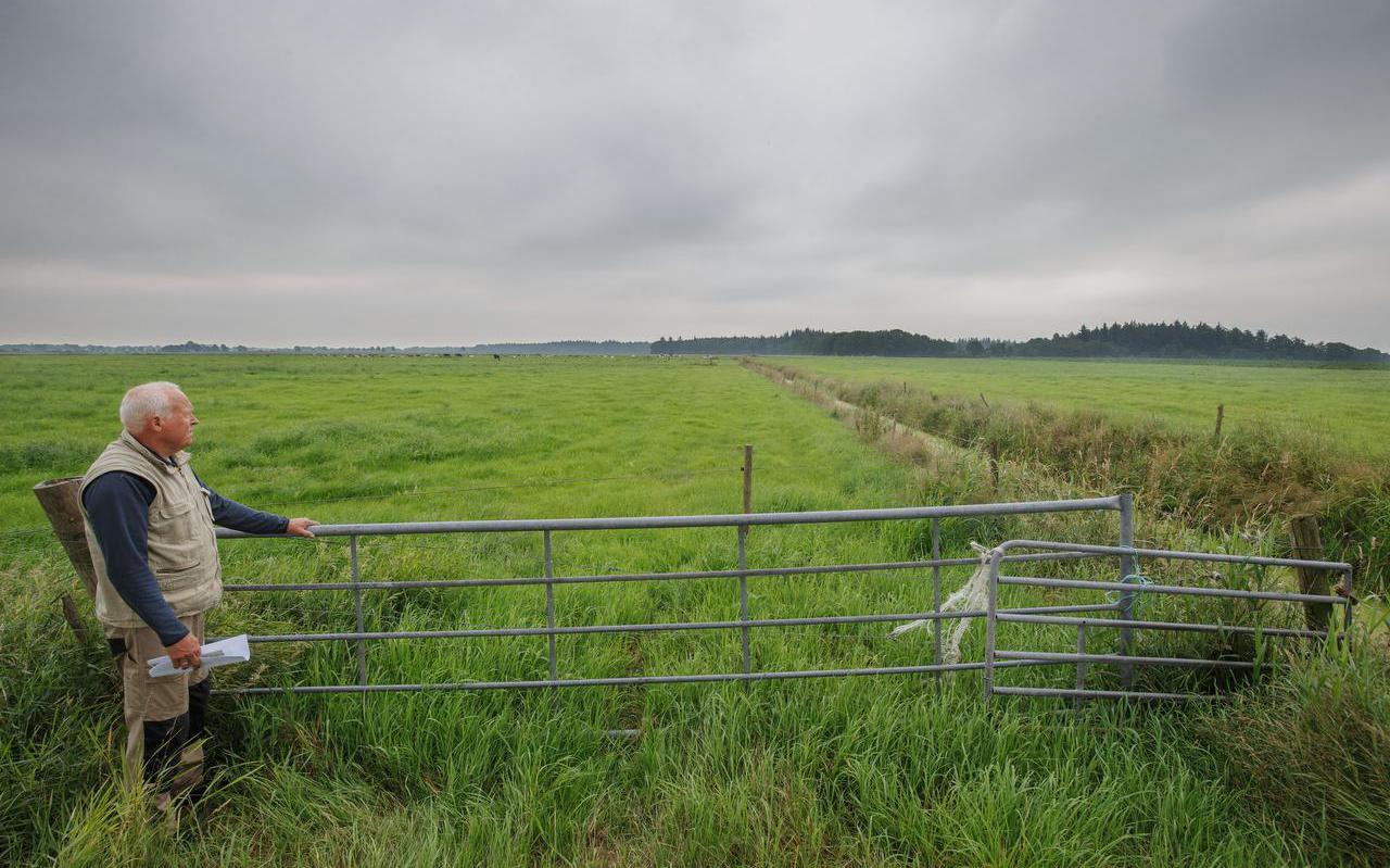 Mark Schaap kijkt naar waar het station is gepland. In de achtergrond ligt het Blauwe Bos.
